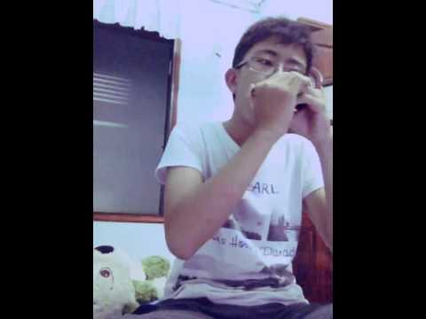 Baixar Just Give Me A Reason - Pink ( Harmonica cover )