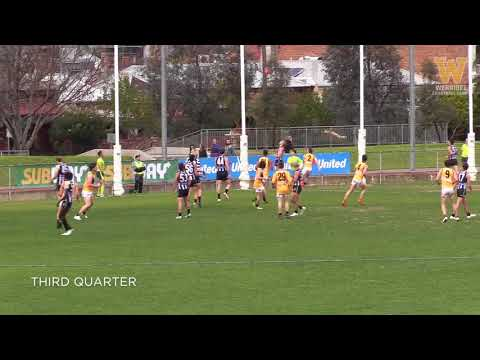 Round 14 highlights: Collingwood vs Werribee