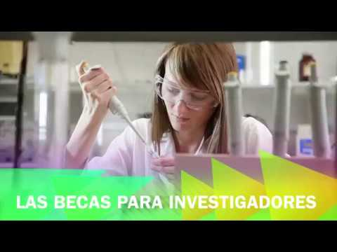 Becas Marie Curie