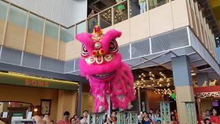 CNY2018 大年初一 ~ Acrobatic Lion Dance (múa lân 跳高樁舞獅) by  KLKSK 吉隆坡关圣宫 @ IPC  (16/2/2018) 4K UHD
