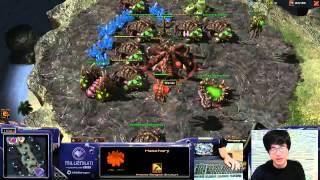 Dragon Trolling as Zerg (Evo Chamber Rush Vs Zerg)