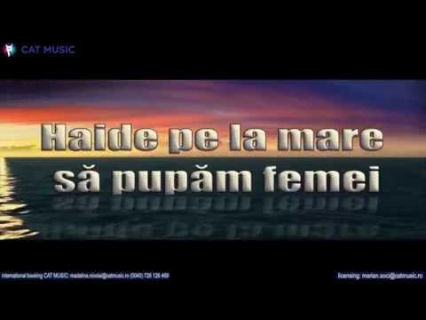 ROA (Rise of Artificial) - PE PACE (Lyric Video)