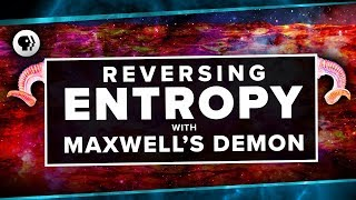 Reversing Entropy with Maxwell's Demon