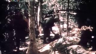 Phim tài liệu Mậu thân 1968 Tập 2: Bí mật kế hoạch X
