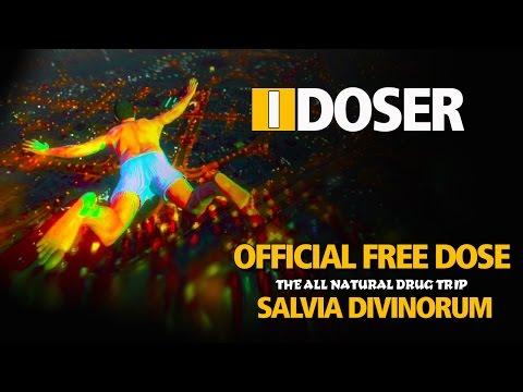 musicas do i-doser gratis