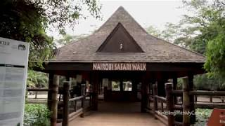 Seeing Lions, Zebras, a Rhino and more at Nairobi Safari Walk  _ #TWMC