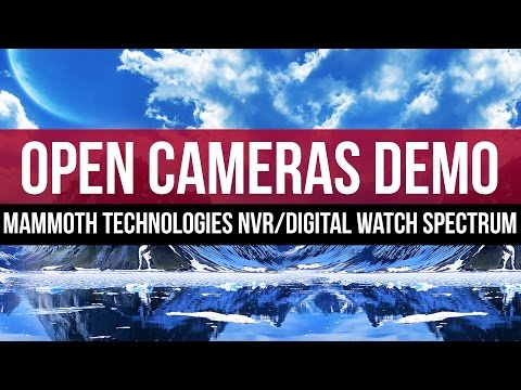 Open Camera Windows: Mammoth Technologies NVR with Digital Watch Spectrum