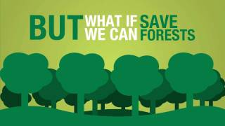 Minus One Project: Save paper. Help the forests.