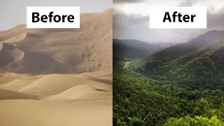 How China Turned the Desert into Green Forests