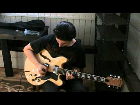 Glen Burton GE335 guitar demo