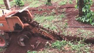 Máy đào rãnh cực nhanh và sâu tại bmt 0986 930 823