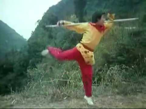 This is kung-fu - Monkey