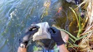 I Found a Bag of Cash Underwater in the River! (Guess How Much Money was Inside?!)