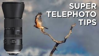 Super Telephoto Lens Tips | Tamron 150-600mm F5-6.3 VC DI G2