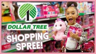 Dollar Tree Shopping Spree! (Dollar Store Haul) | MOM VLOG