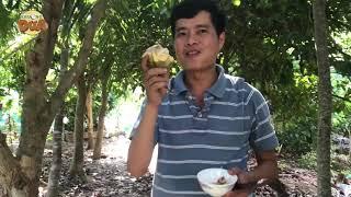 No nê với vườn trái cây nhà Khương Dừa!!!