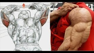 Tom Platz back training at Gold's gym - mp3toke