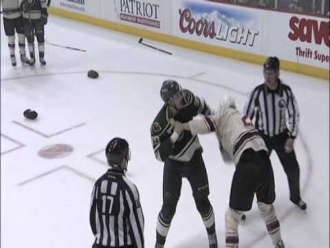Game Highlights Nov. 22 Chicago Wolves vs Iowa Wild