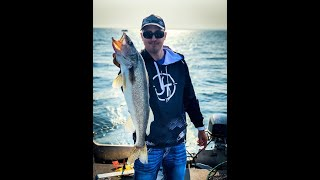 Trolling on Oneida Lake for Walleyes and throwing all your tackle OVERBOARD!