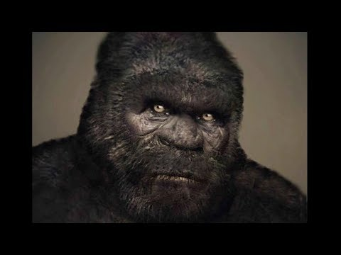 The Most Compelling Bigfoot Footage
