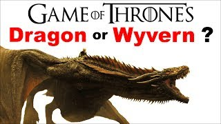Are Game of Thrones Dragons REALLY Wyverns ❓ What is the difference between a DRAGON and a WYVERN ❓