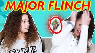 Haschak Sisters Try Not To Flinch Challenge!!!