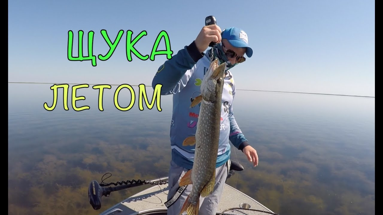 Рыбалка в Приморско-Ахтарске