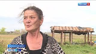 Участковый полиции в Калачинском районе спас от смерти собаку