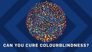 Can You Cure Colourblindness? | Brit Lab