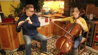 Michael Walsh - Irish Air on Flute & Cello from Liz Hanks & Michael Walsh