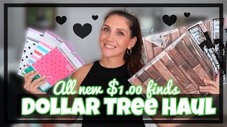 DOLLAR TREE HAUL **A NEW SHIPMENT CAME IN!** RANDOM AWESOME FINDS