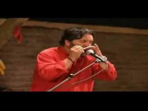 7 - Cueca con armonica - Rene Inostroza (Folklore Bicentenario Chile)