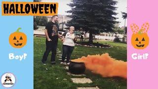 10 Halloween Gender Reveal Compilation Ideas 2018