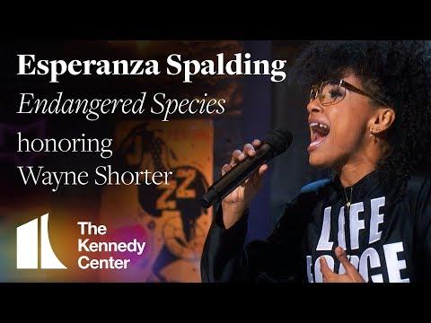 "Esperanza Spalding | ""Endangered Species"" honoring Wayne Shorter | Kennedy Center Honors"
