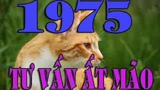 🍎 TƯ VẤN ẤT MÃO 1975 ( TÔNG HỢP ) - Phong Thủy XUÂN THỨ