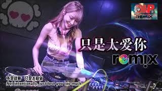 只是太爱你 - Zhi Shi Tai Ai Ni - Just Love You Too Much【DJ PARTY REMIX 2019🎧】