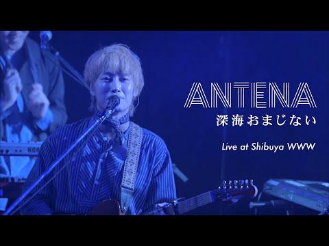 ANTENA「深海おまじない」Live at Shibuya WWW