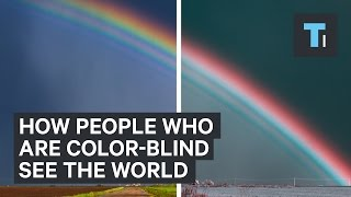 How people who are color-blind see the world