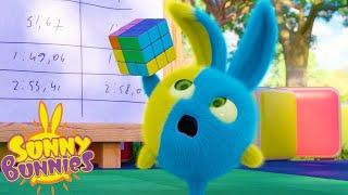 SUNNY BUNNIES - CUBO DE RUBIK | Dibujos animados para niños | WildBrain