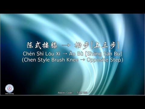 Chén Shì Lōu Xī → Ào Bù [Shàng Sān Bù] TJQC SSB (Chen Style Brush Knee → Opposite Step)
