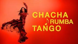 TOP OF RUMBA CHACHA TANGO | RELAXING COFFEE MORNING GUITAR MUSIC