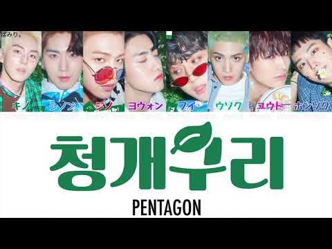 【日本語字幕/かなるび/歌詞】アマガエル(청개구리/Naught boy)-PENTAGON(ペンタゴン)