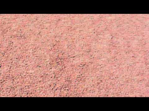 1st person veiw mars rover footage - photo #5