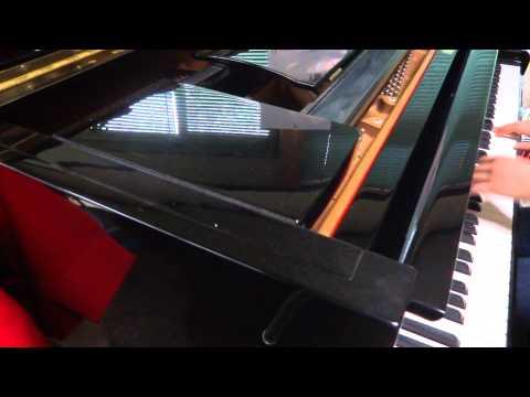 Super Junior Evanesce(piano cover)