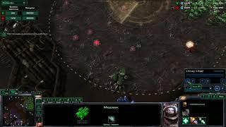 StarCraft II 2019 02 20   03 13 07 01