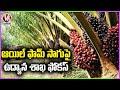 Horticulture Dept Focus On Oil Farming Cultivation | V6 News