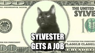 Talking Kitty Cat - Sylvester Gets A Job