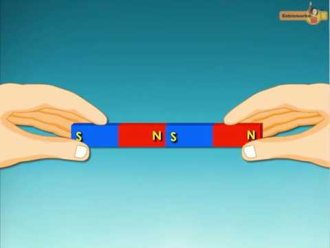 Fun with Magnets Videos - CBSE Class 6th
