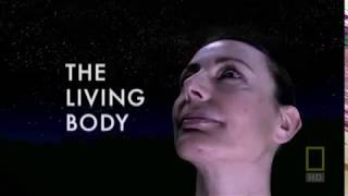 Внутри живого тела (Inside the Living Body, 2007)