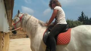 Cómo subir y bajar del caballo